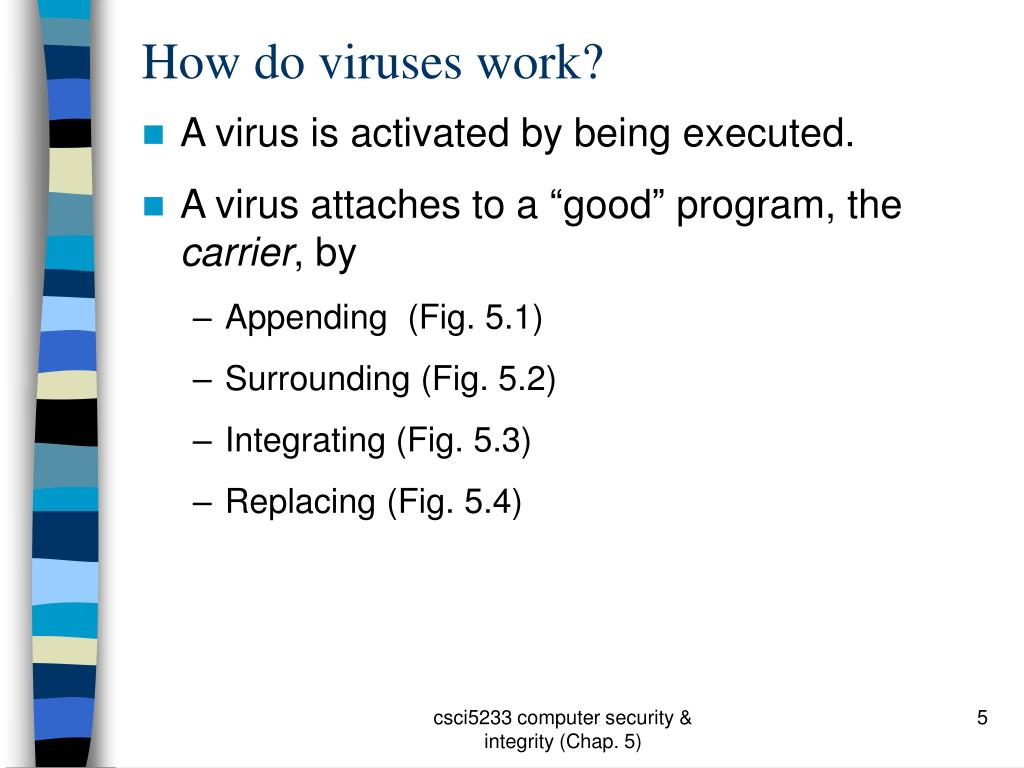 How do viruses work?