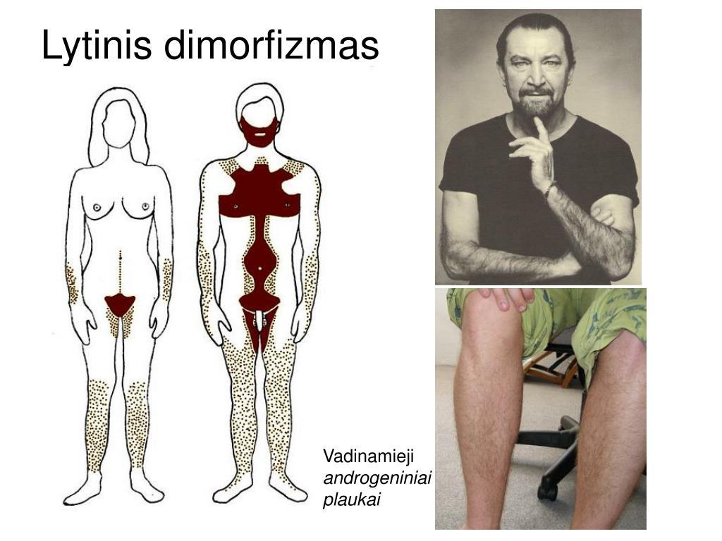 Lytinis dimorfizmas