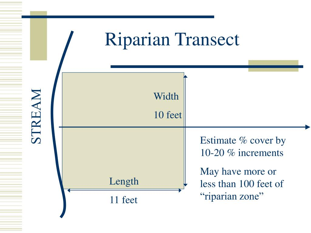 Riparian Transect