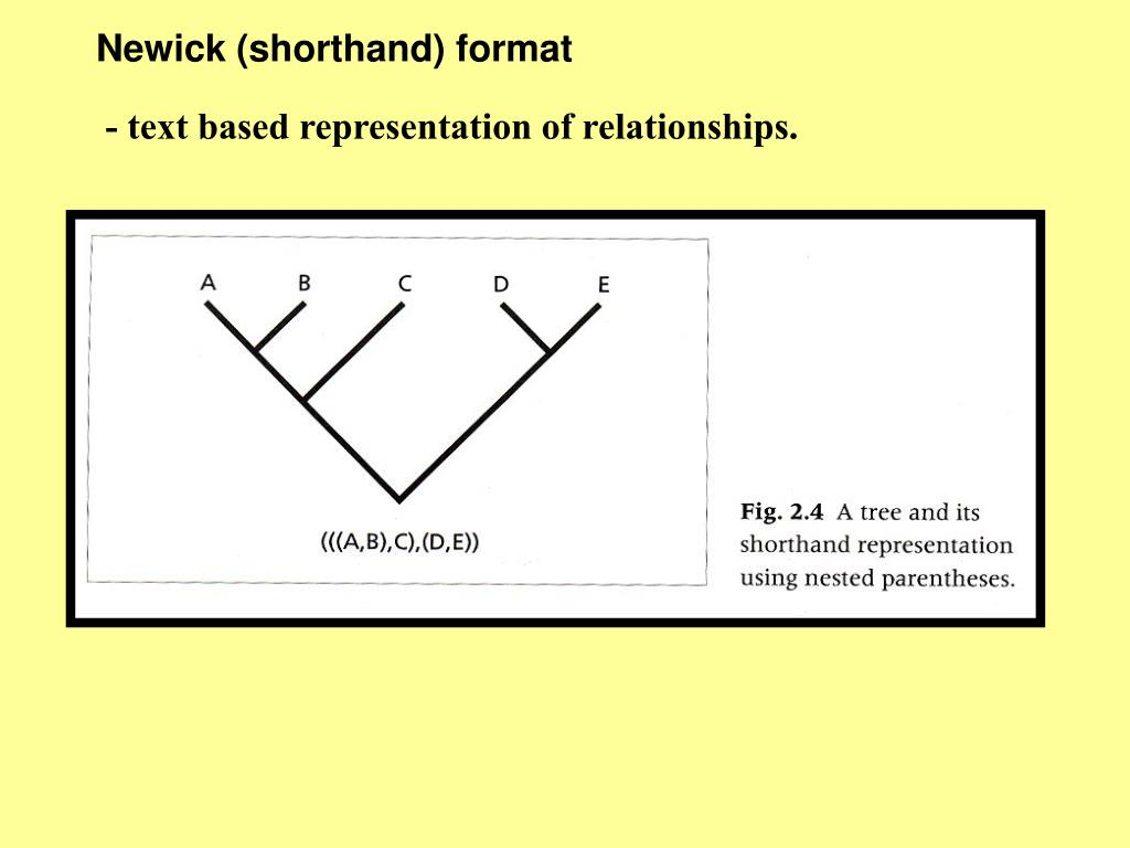 Newick (shorthand) format