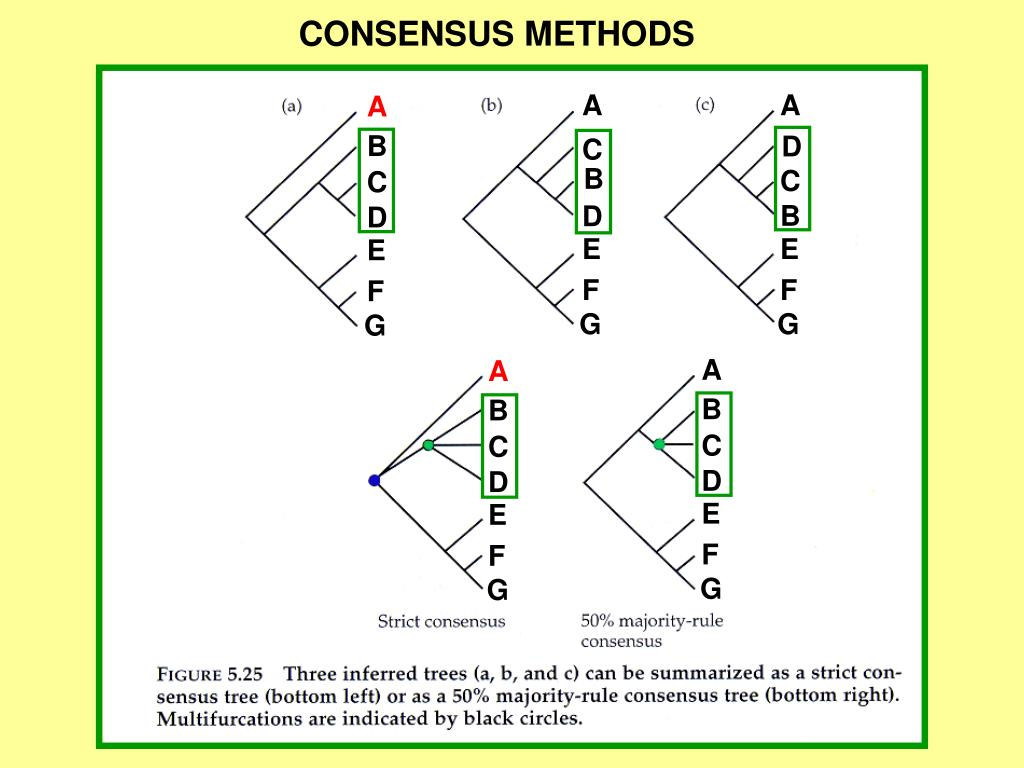 CONSENSUS METHODS