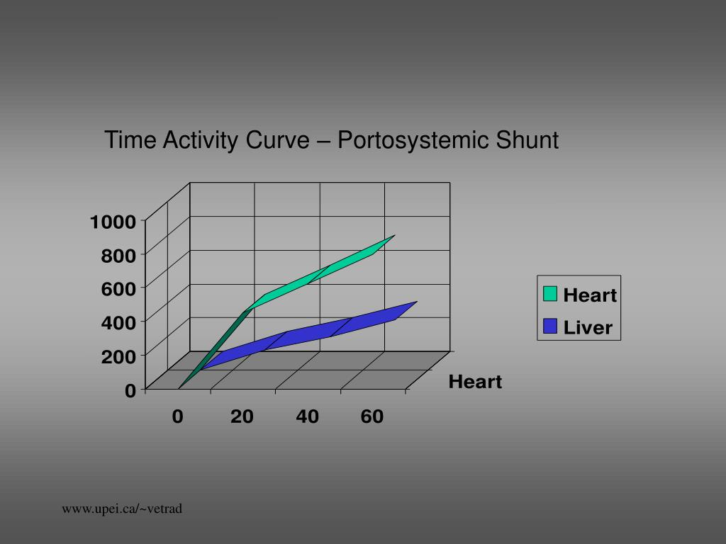 Time Activity Curve – Portosystemic Shunt