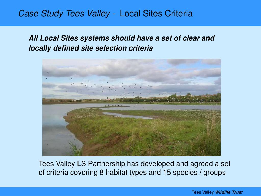 Case Study Tees Valley