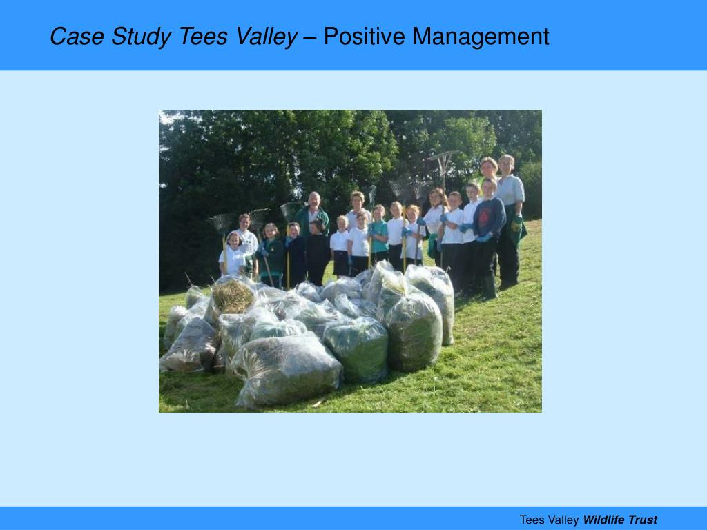 Case Study Tees Valley –