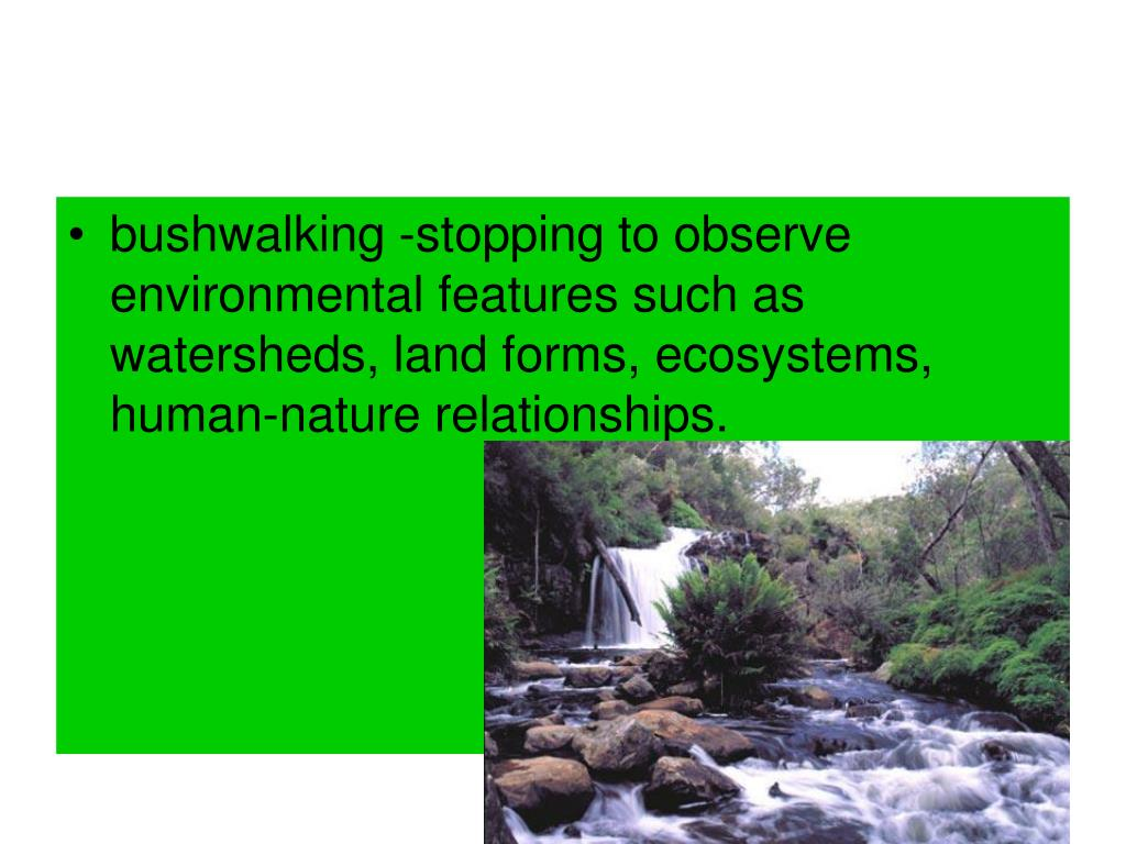 bushwalking -stopping to observe environmental features such as watersheds, land forms, ecosystems, human-nature relationships.