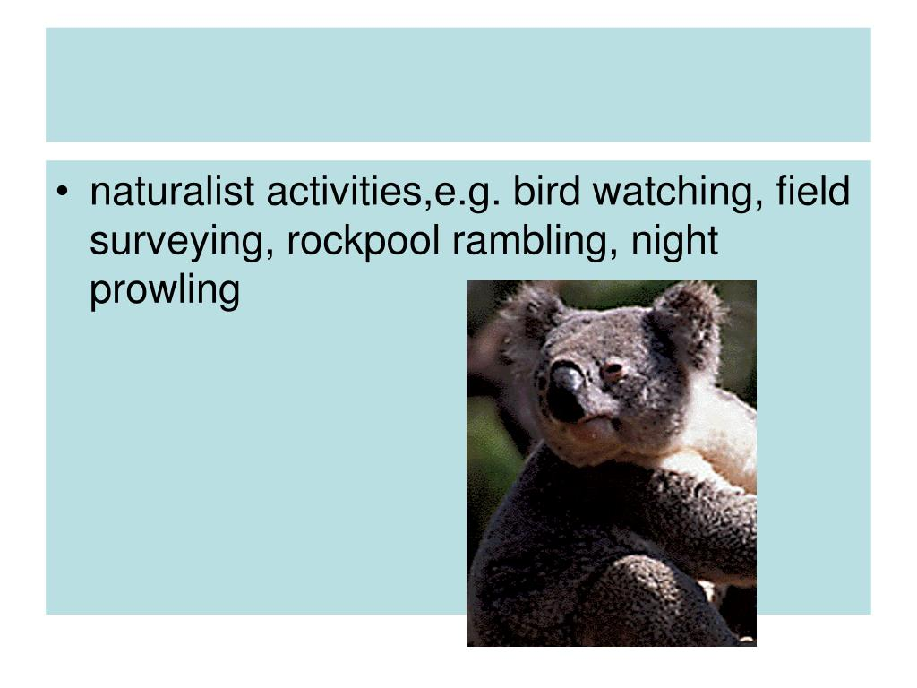 naturalist activities,e.g. bird watching, field surveying, rockpool rambling, night prowling