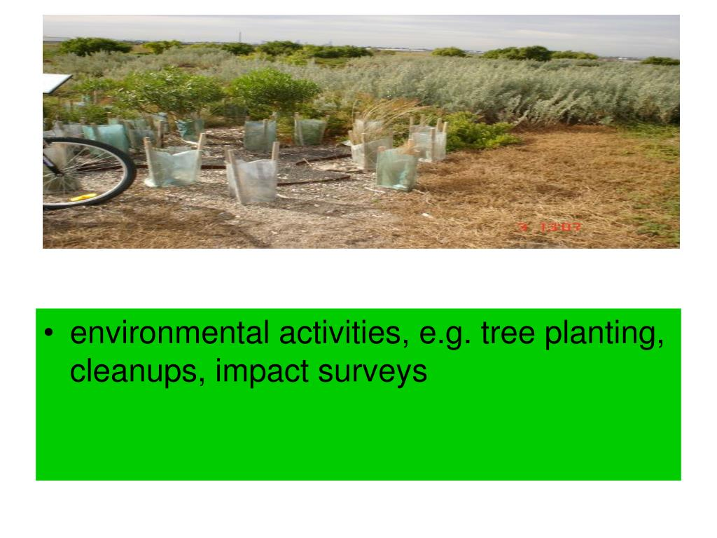 environmental activities, e.g. tree planting, cleanups, impact surveys