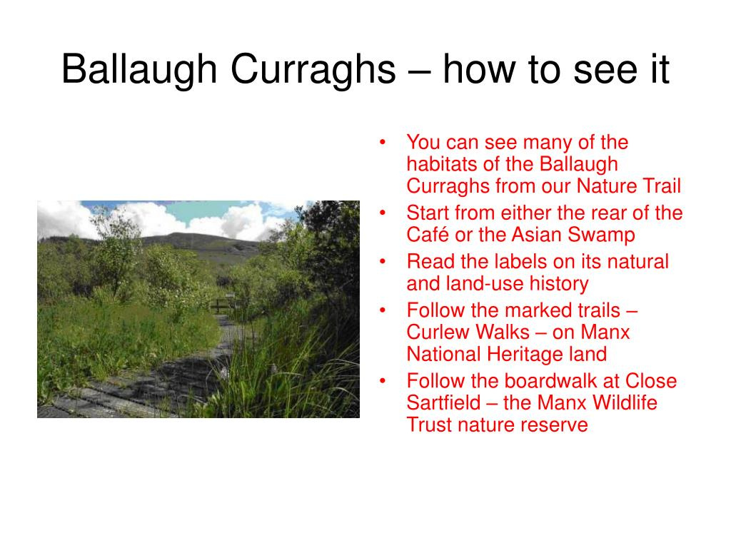 Ballaugh Curraghs – how to see it