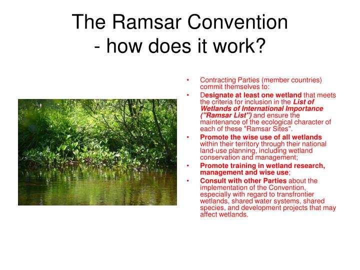 The ramsar convention how does it work