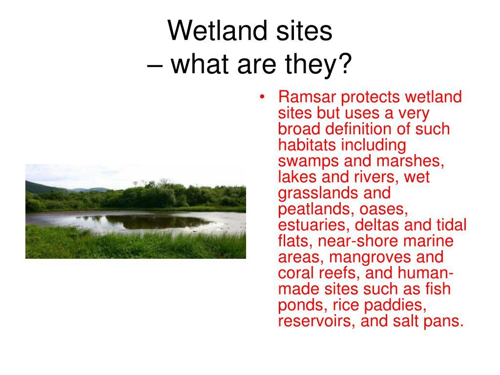 Wetland sites