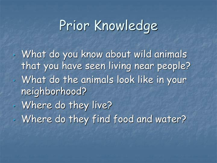 Prior knowledge