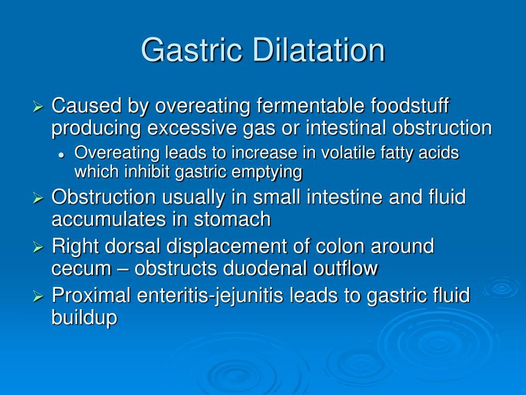 Gastric Dilatation