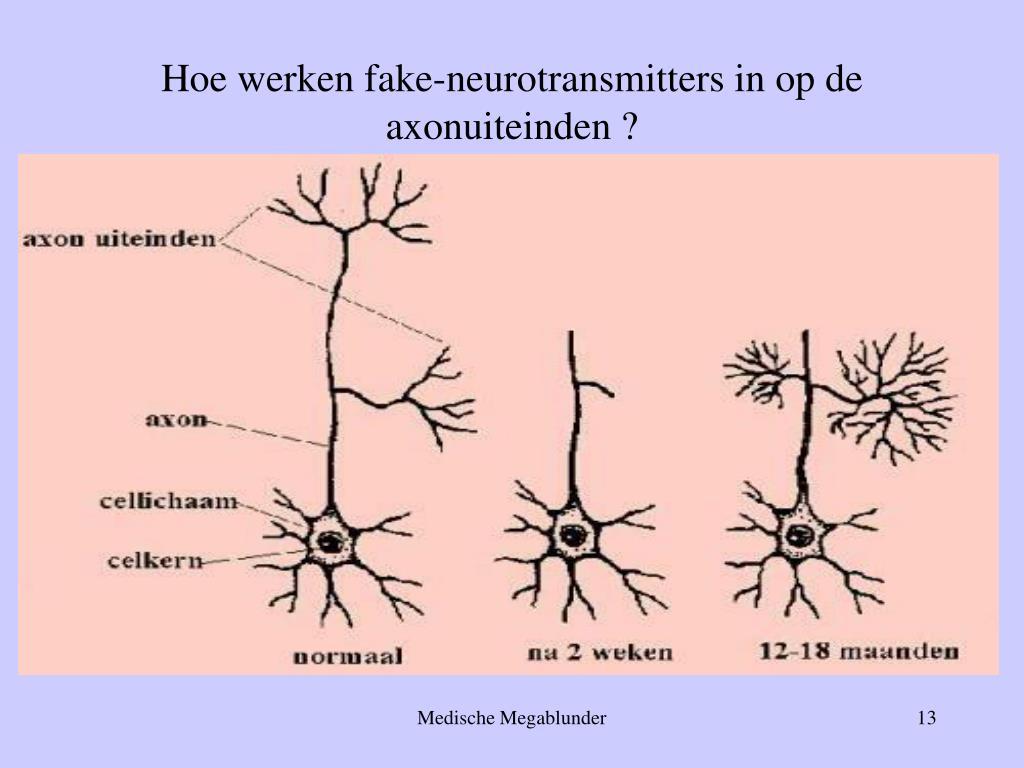 Hoe werken fake-neurotransmitters in op de axonuiteinden ?