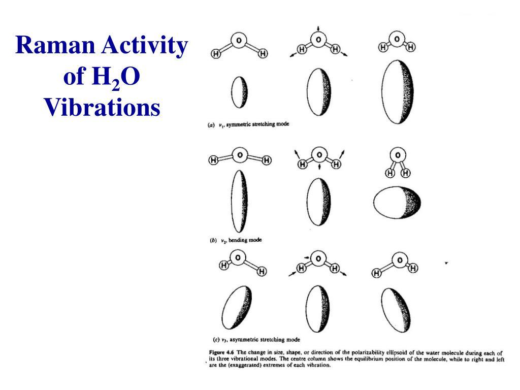 Raman Activity of H