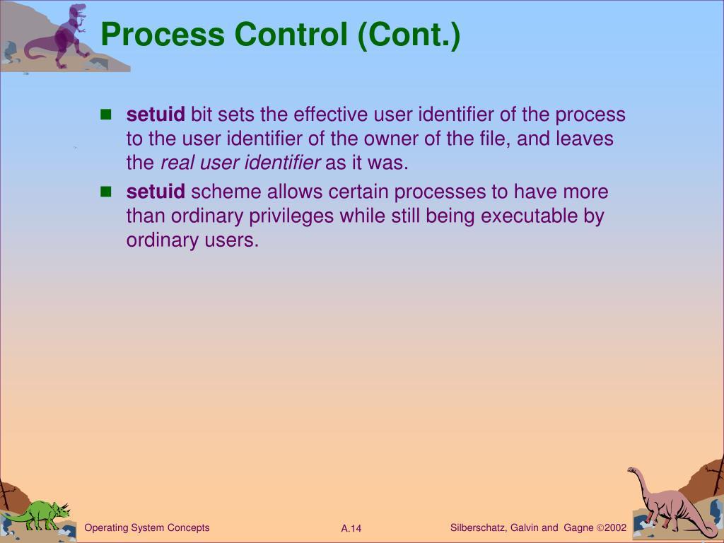 Process Control (Cont.)