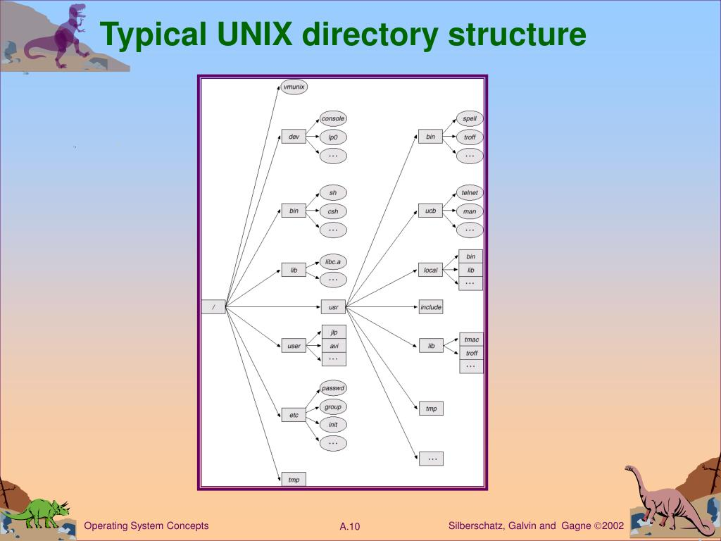 Typical UNIX directory structure