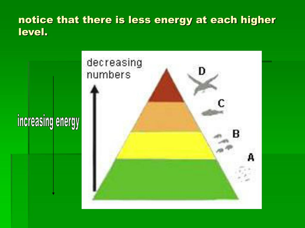 notice that there is less energy at each higher level.