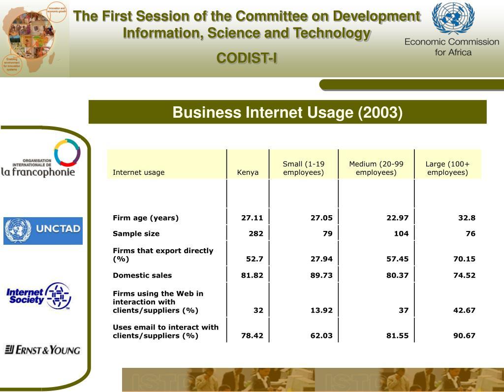 Business Internet Usage (2003)