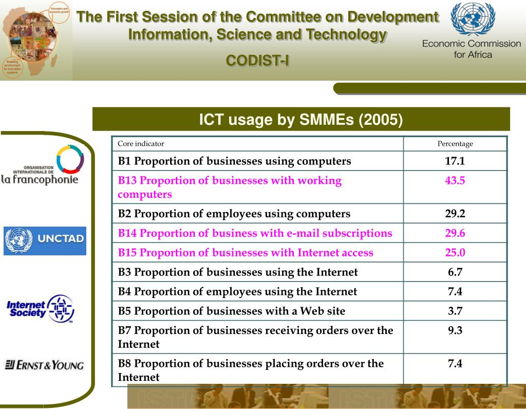 ICT usage by SMMEs (2005)