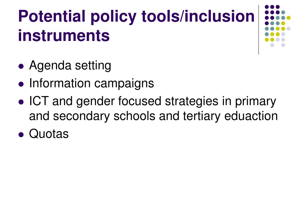 Potential policy tools/inclusion instruments