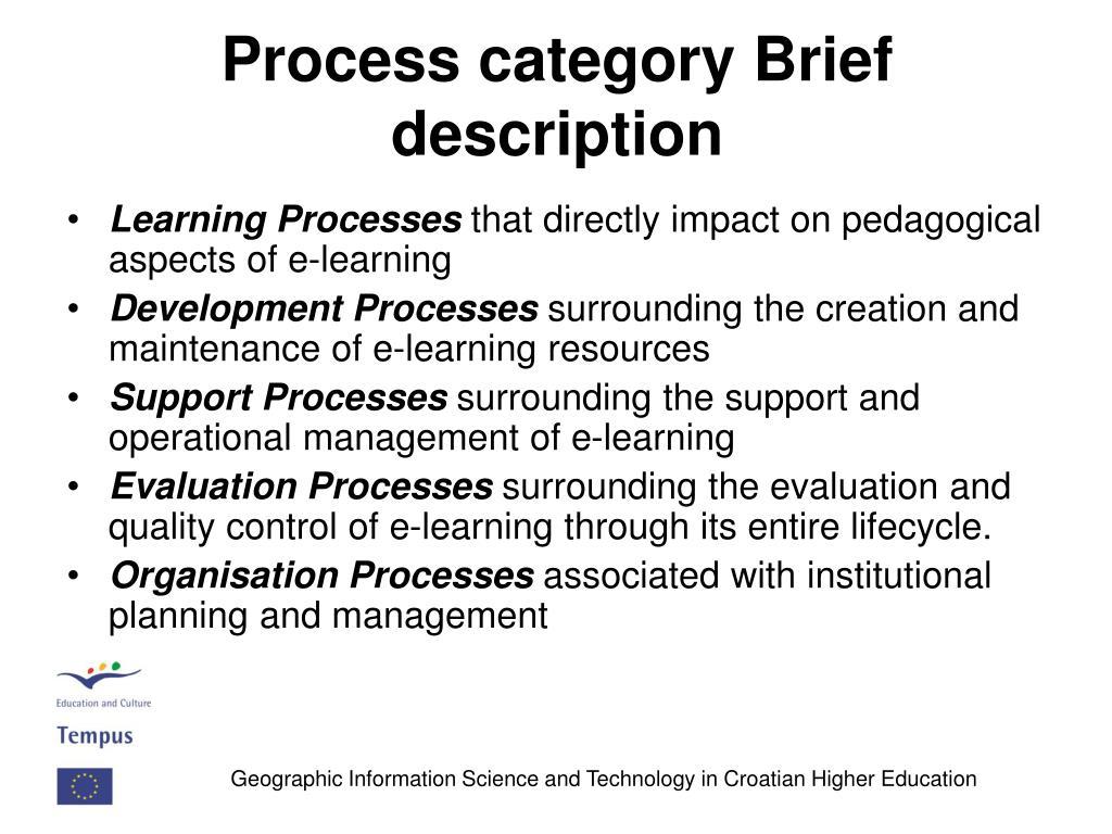 Process category Brief description