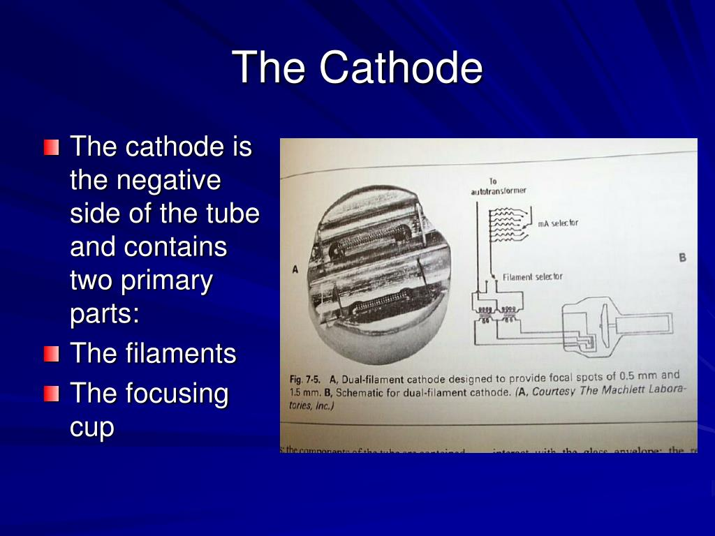 The cathode is the negative side of the tube and contains two primary parts: