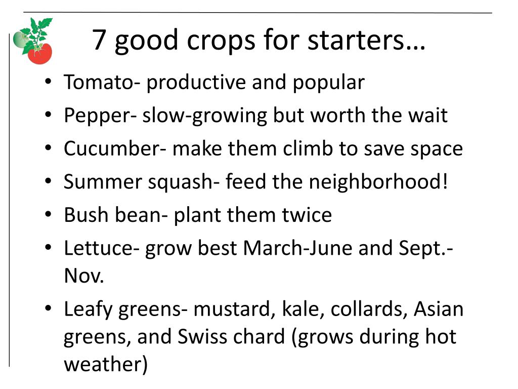 7 good crops for starters…