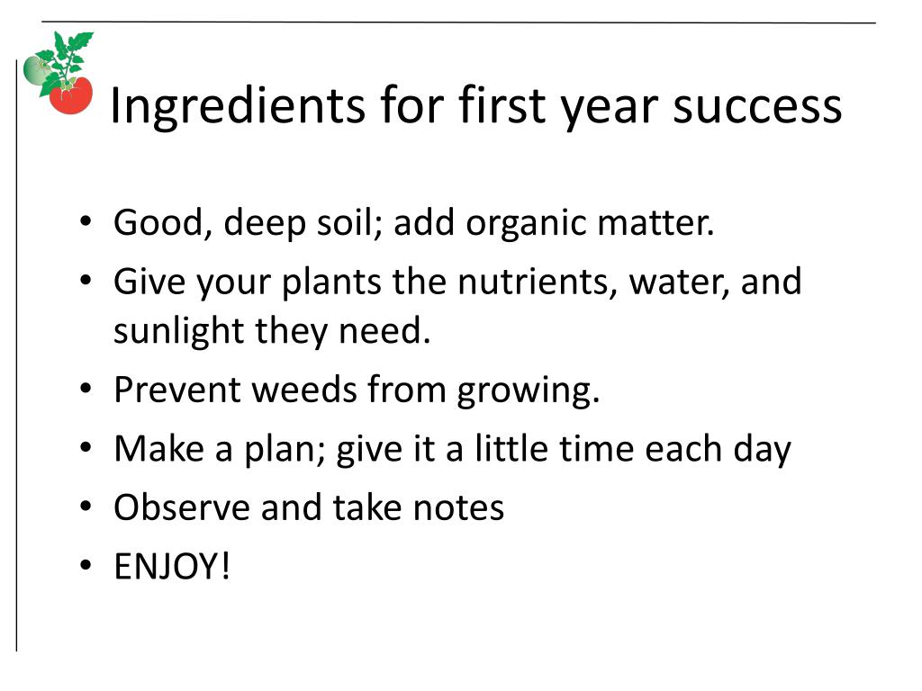 Ingredients for first year success