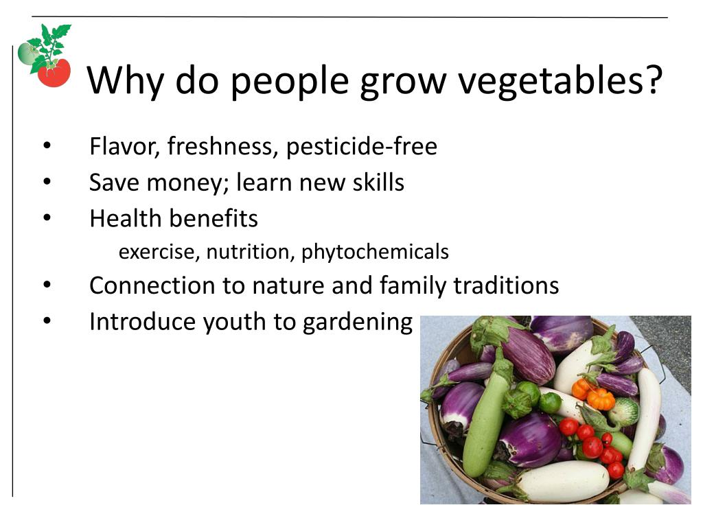Why do people grow vegetables?