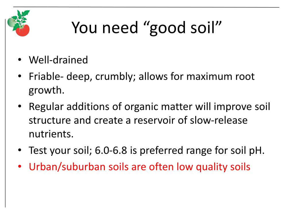 "You need ""good soil"""
