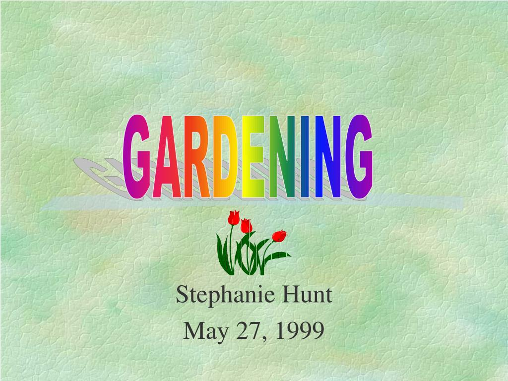 stephanie hunt may 27 1999