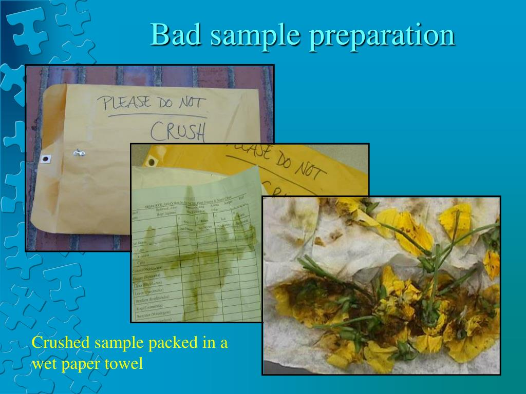 Bad sample preparation