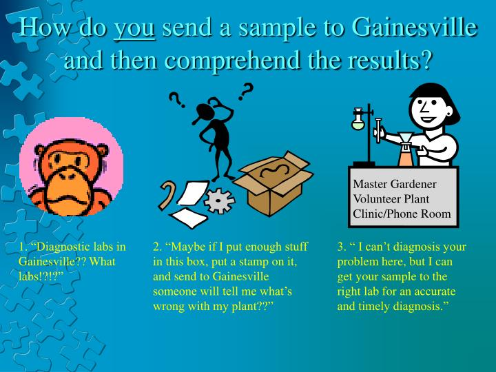 How do you send a sample to gainesville and then comprehend the results