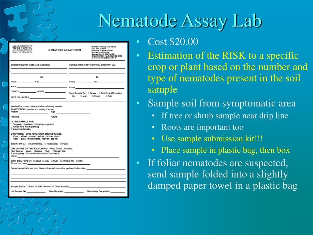 Nematode Assay Lab