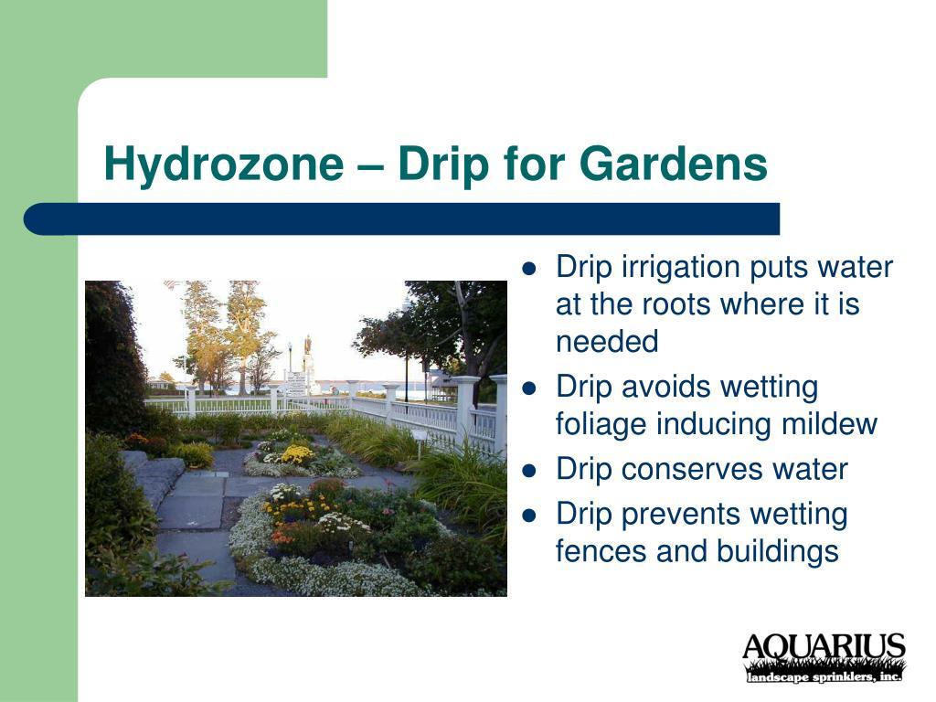 Hydrozone – Drip for Gardens
