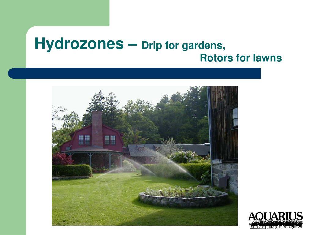 Hydrozones –