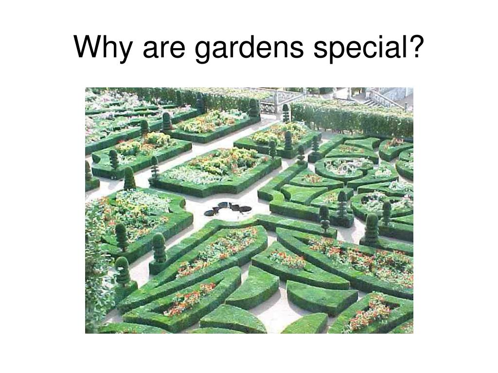 Why are gardens special?