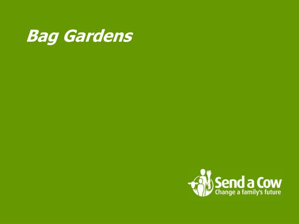 Bag Gardens