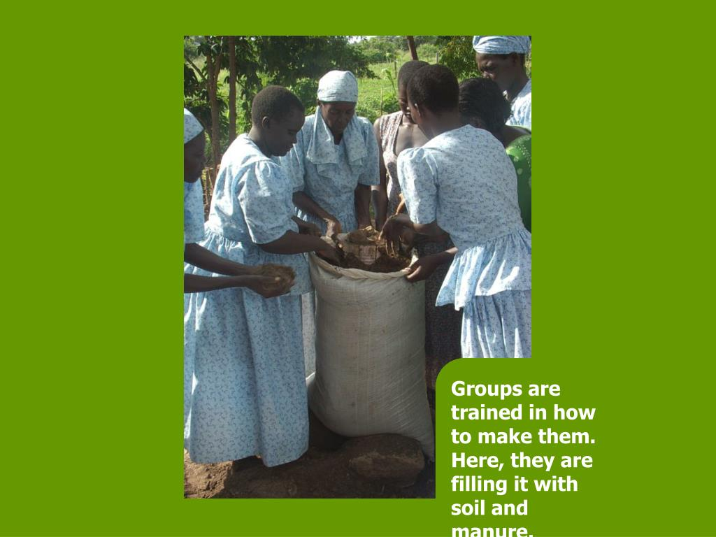 Groups are trained in how to make them. Here, they are filling it with soil and manure.