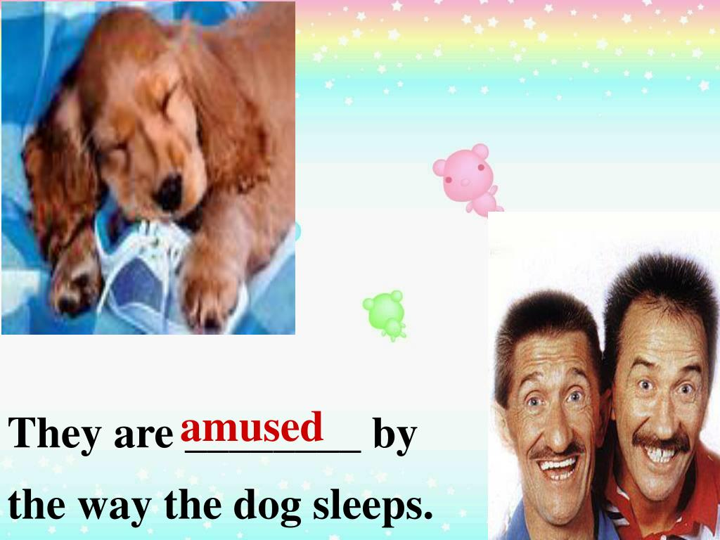 They are ________ by the way the dog sleeps.