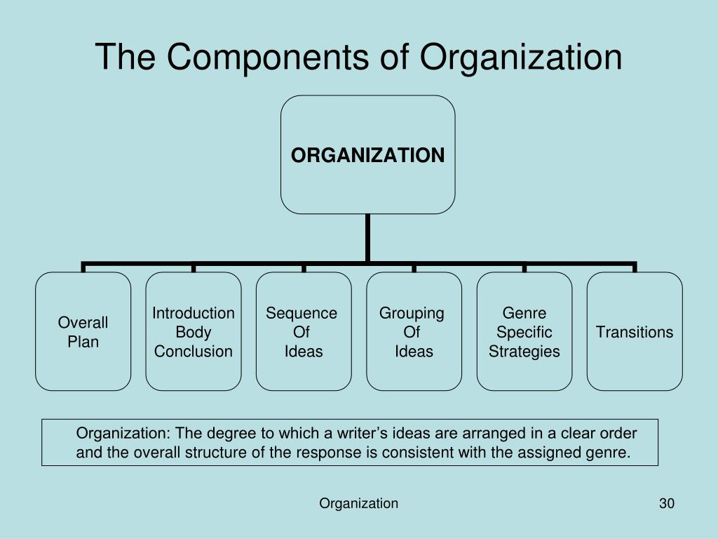 The Components of Organization