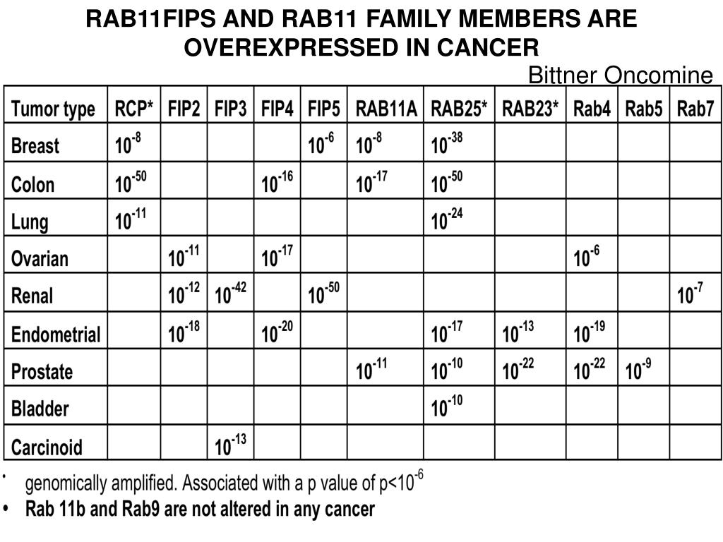 RAB11FIPS AND RAB11 FAMILY MEMBERS ARE OVEREXPRESSED IN CANCER
