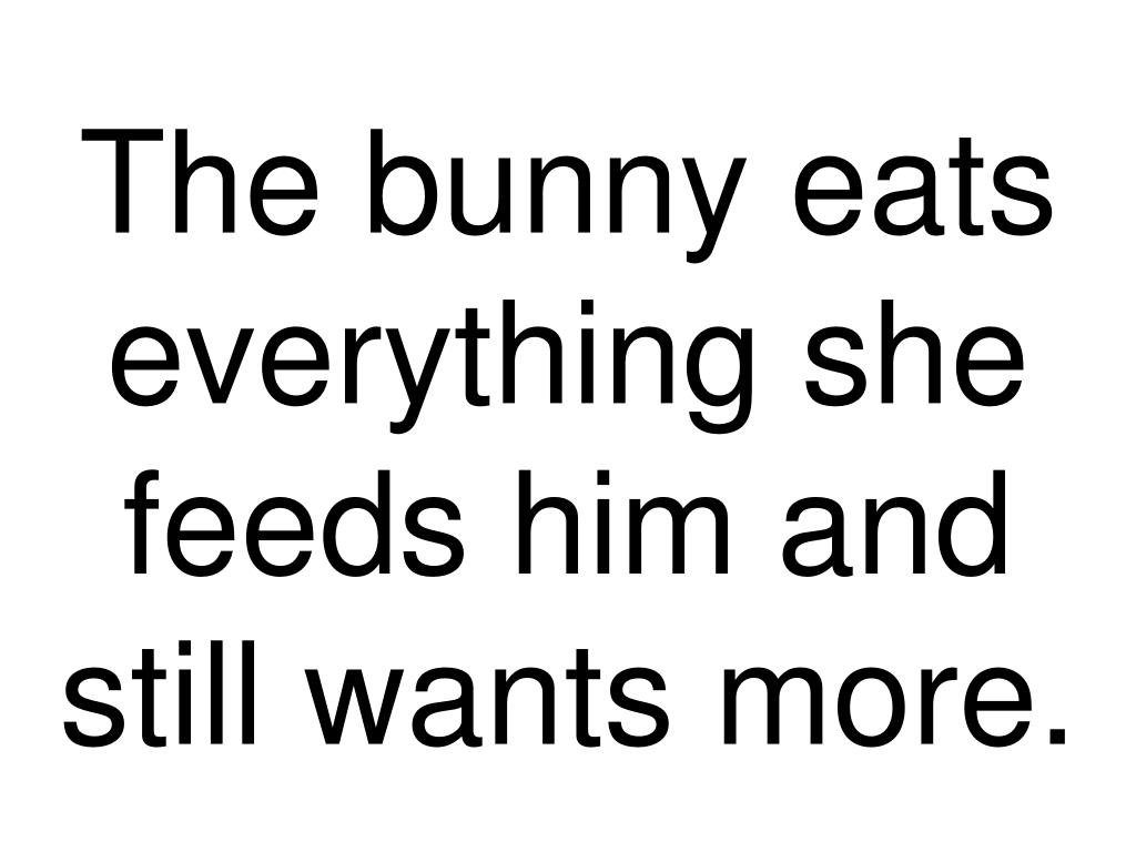The bunny eats everything she feeds him and still wants more.