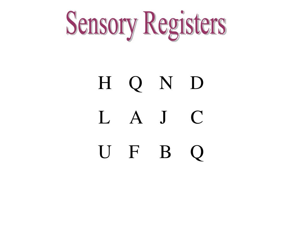 Sensory Registers