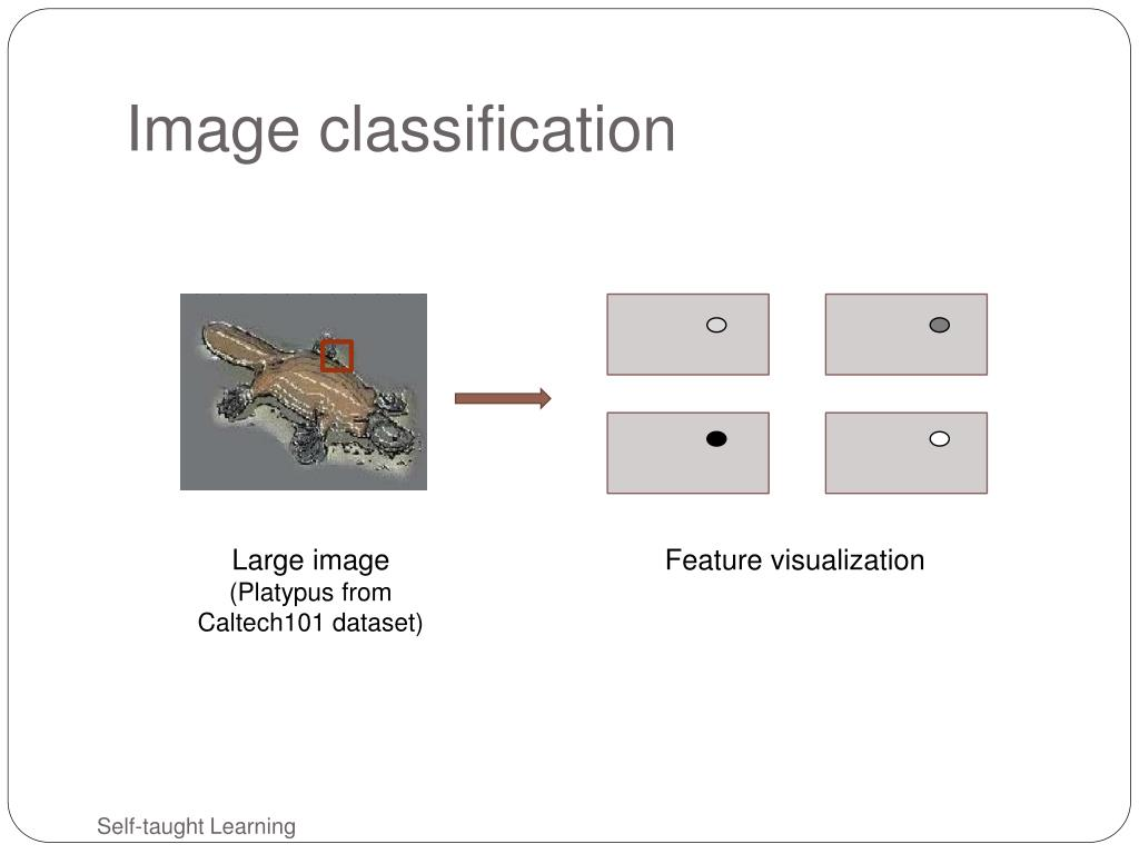 Image classification