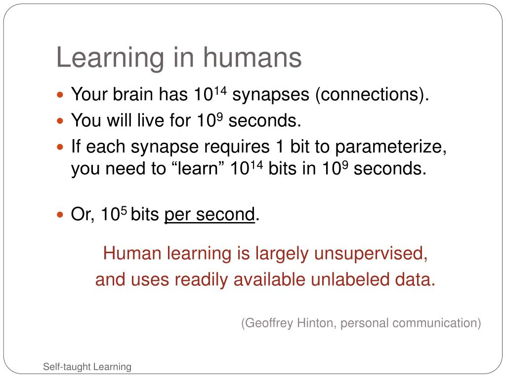 Learning in humans