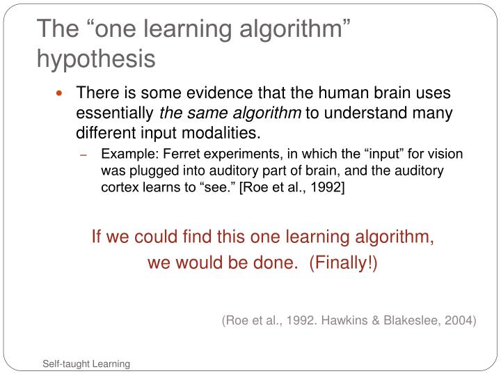 "The ""one learning algorithm"" hypothesis"