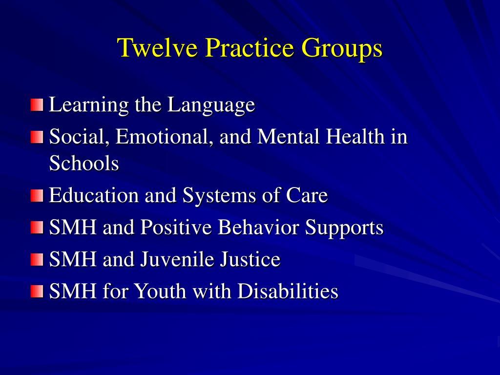 Twelve Practice Groups