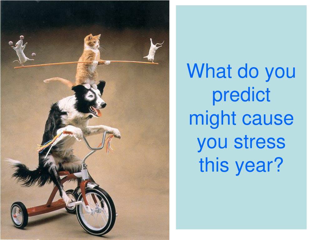 What do you predict