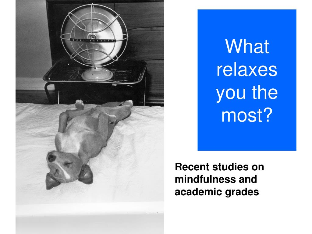 What relaxes you the most?
